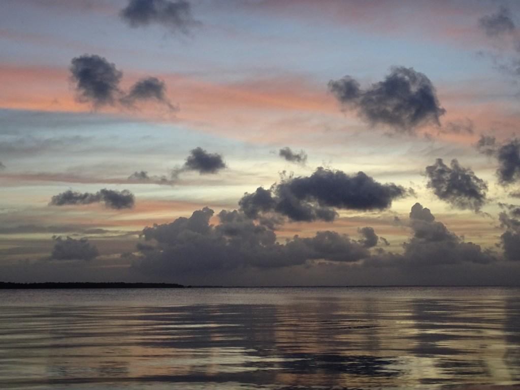 Braamspunt, The Wild Coast of Suriname