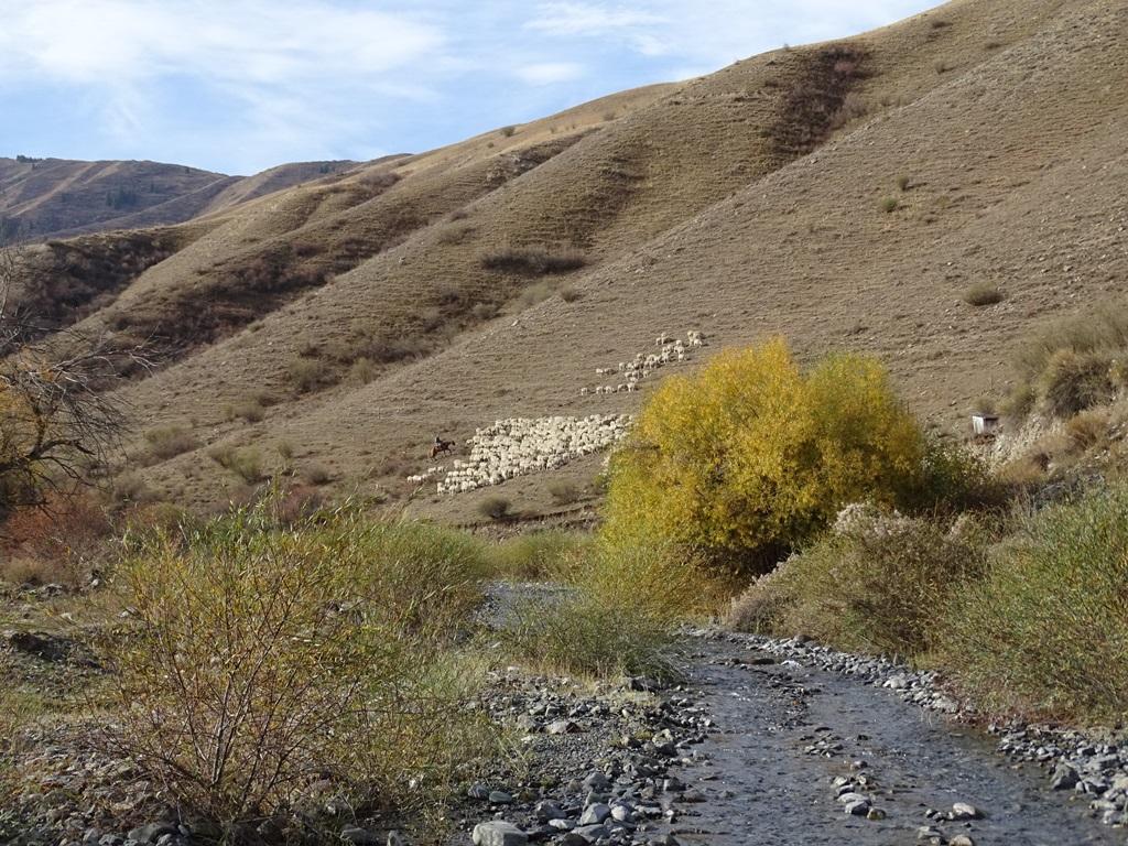 """""""Road"""" to Kaiyndy Lake, Kazakhstan"""