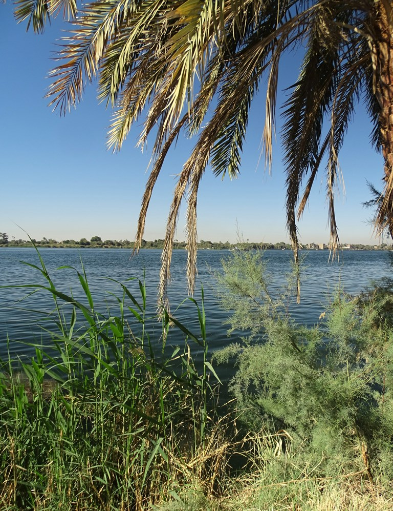 South of Luxor, The Nile, Egypt