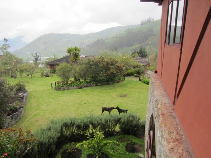 Hacienda Manteles, Patate, Ecuador