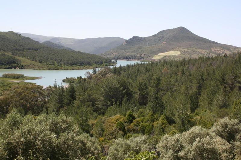 The Rif, North Morocco