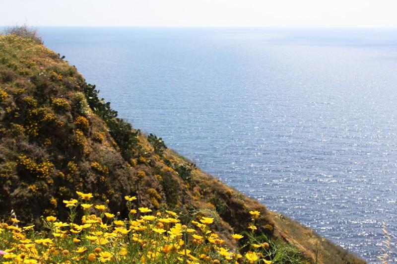Mediterranean Coast, North Morocco