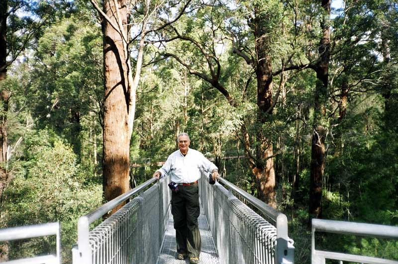 Tree Top Walk,  SW Australia