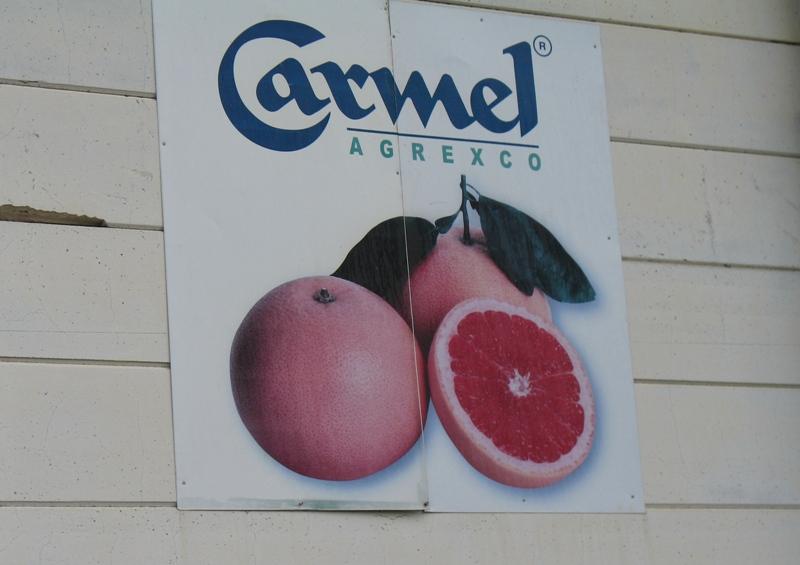 Carmel Agrexco, Israel