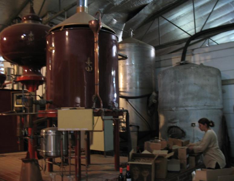 Tishbi Winery, Zichron Yaacov, Israel