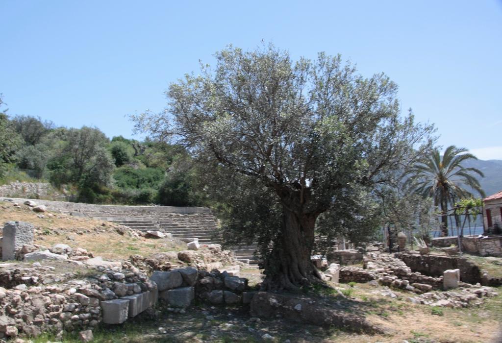 Old Epidaurus, Peloponnese, Greece