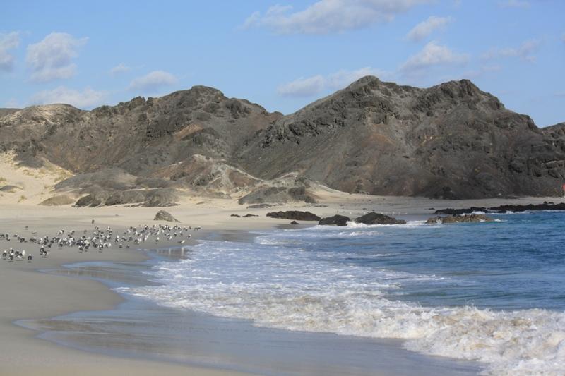 Ras Al Madrakah, Oman