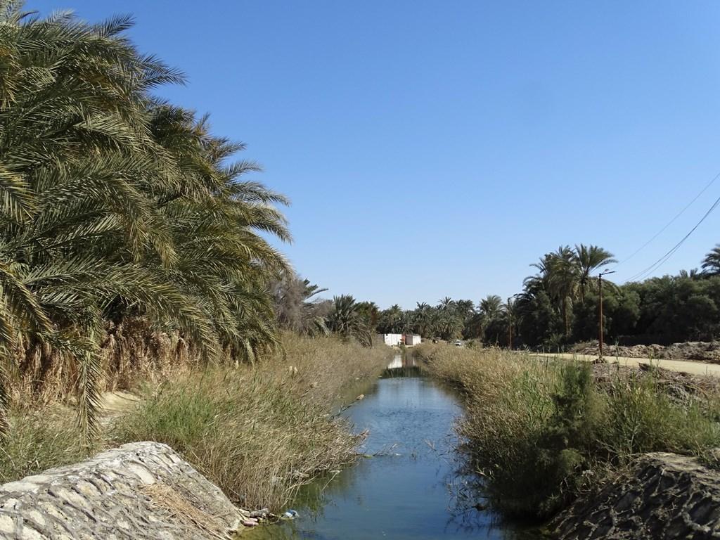 Siwa Oasis, Western Desert, Egypt