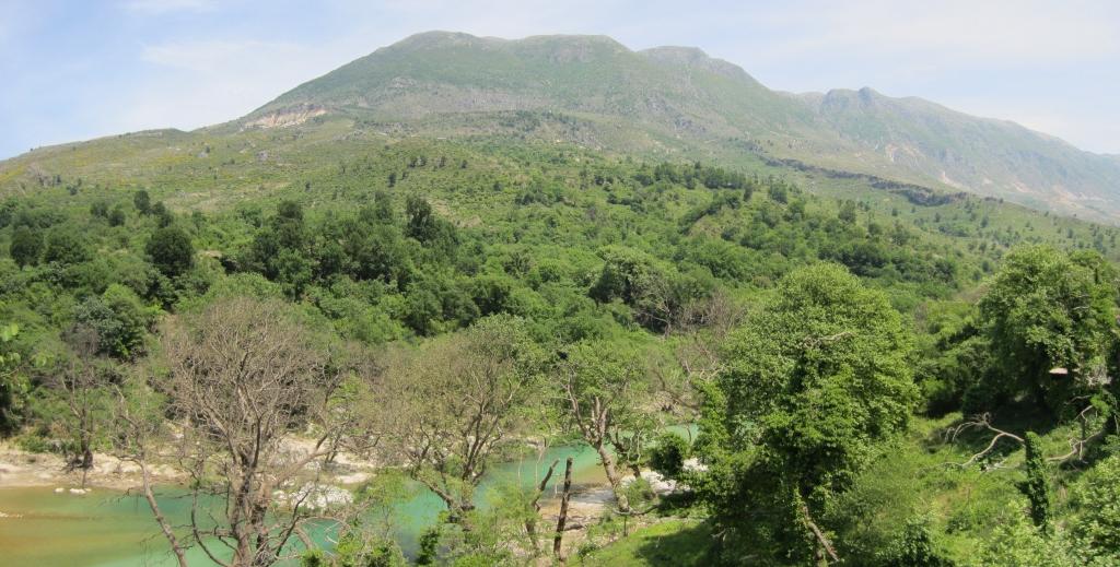 Drino River, Albania